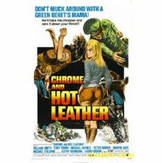 Chrome And Hot Leather Movie 8x10 photo Master Print