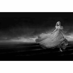 "Cinderella Black and White Poster 24""x36"""