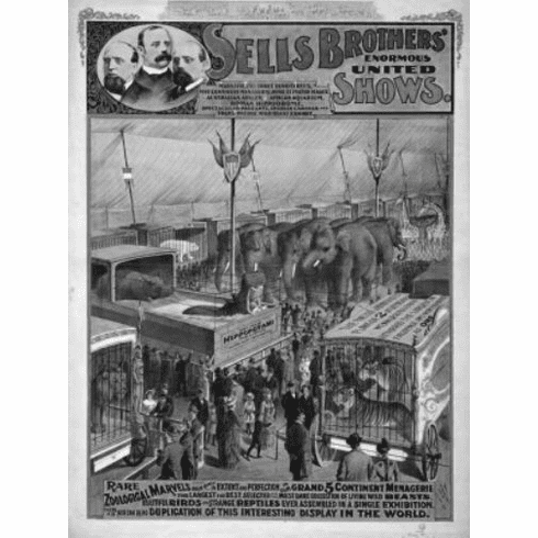 "Circus Black and White Poster 24""x36"""