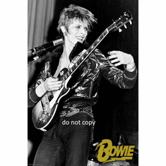 David Bowie Black and White Poster 24x36