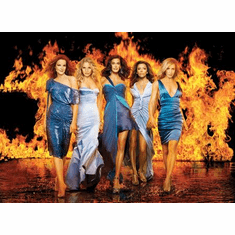 Desperate Housewives On Fire 11x17 Mini Poster