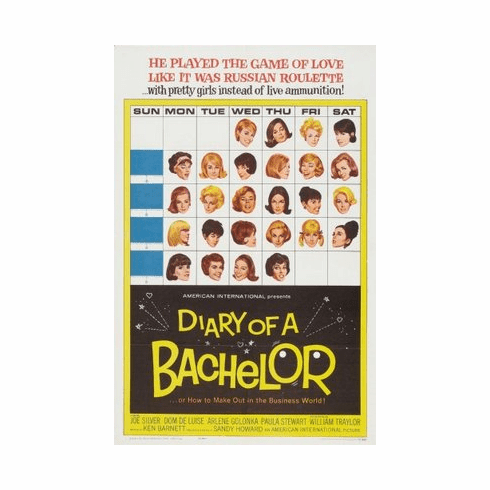 Diary Of A Bachelor Movie mini poster 11x17 #01