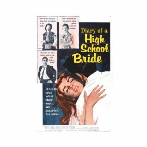 Diary Of A High School Bride Mini Movie #01 8x10 photo master print