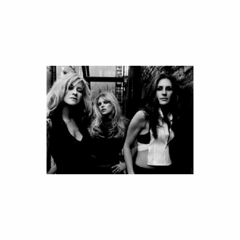 Dixie Chicks The 8x10 photo Master Print