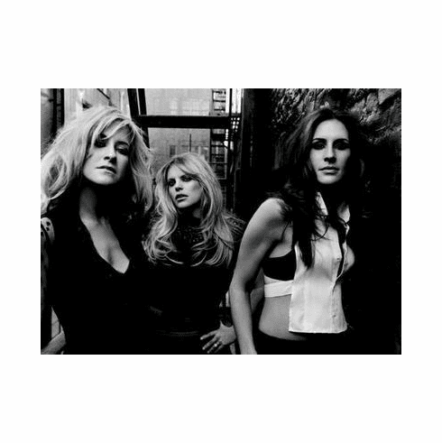 Dixie Chicks The Poster 24in x36 in