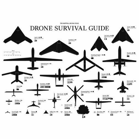 """Drones Identification Chart Black and White Poster 24""""x36"""""""