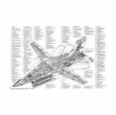 Ef 111 Raven Cutaway Poster Warbird Airplane 8x10 photo