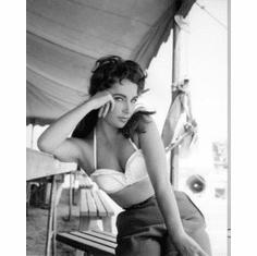 """Elizabeth Taylor Black and White Poster 24""""x36"""""""