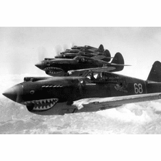 """Flying Tigers 1942 Aircraft Black and White Poster 24""""x36"""""""