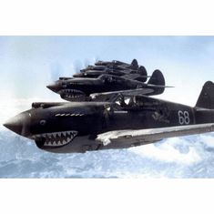 Flying Tigers 1942 Aircraft Mini poster 11inx17in