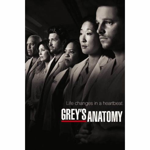 Greys Anatomy Poster 24inx36in