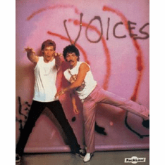 Hall And Oates Poster 24inx36in