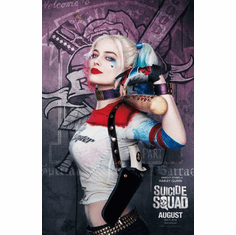 Harley Quinn Suicide Squad Mini Poster 11x17