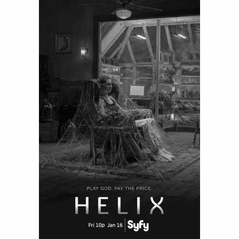 "Helix Black and White Poster 24""x36"""