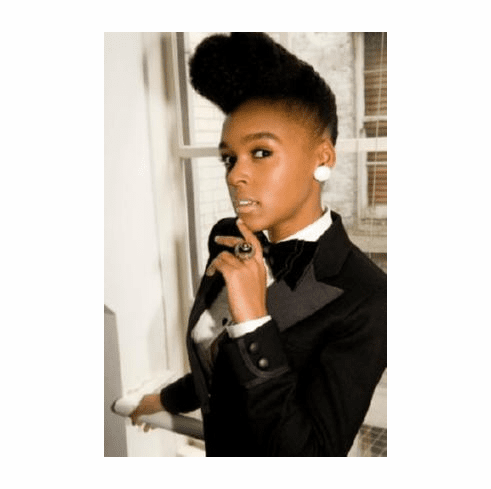 Janelle Monae Poster #02 24inx36in