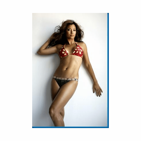Kelly Hu Bikini Poster 24inx36in