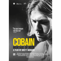 Kurt Cobain Montage Of Heck Movie Poster 24in x36in