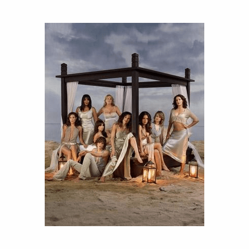 L Word Poster Beach 24in x36 in