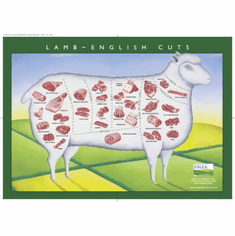 Lamb Cuts Illustration Chart poster 24inx36in Poster