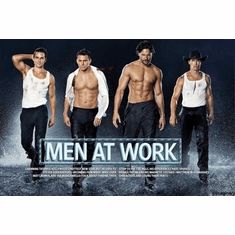 Magic Mike poster Mini Poster 11inx17in Wet Men at work