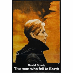 Man Who Fell To Earth Movie Poster David Bowie 24in x36 in