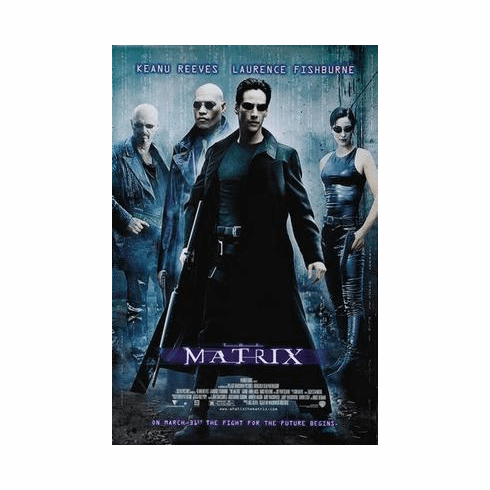 Matrix The Movie Poster 24in x36 in