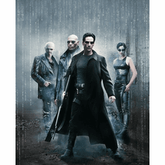 Matrix The Movie poster 24inx36in Poster