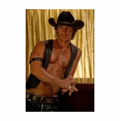 Matthew Mcconaughey Movie Poster Magic Mike 8x10 photo