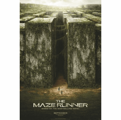 Maze Runner The Movie Poster 24in x36in
