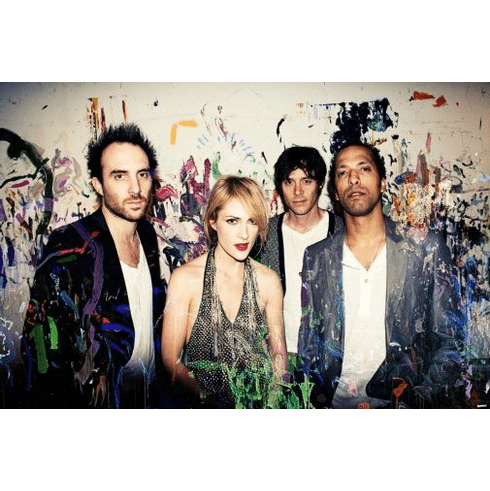 Metric Poster 24inx36in