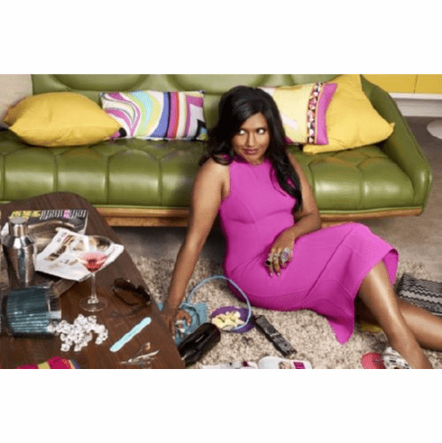 Mindy Project The Poster 24inx36in