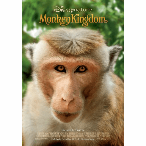 Monkey Kingdom Movie Poster 24in x36in