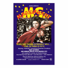 Ms Magnificent Movie Poster 24x36