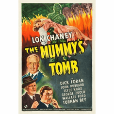 Mummys Tomb Movie Poster 24inx36in