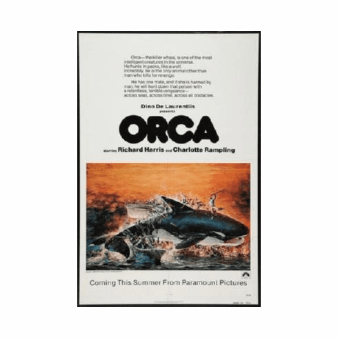 Orca Poster 24inx36in