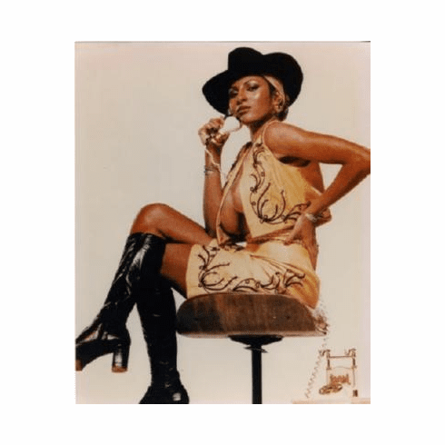 Pam Grier Poster 24inx36in