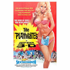 playmates Mini Poster 11inx17in poster
