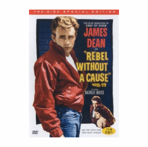 Rebel Without A Cause Movie 11inx17in Mini Poster #01