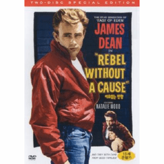 Rebel Without A Cause Movie Poster 24inx36in