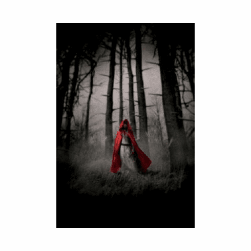 Red Riding Hood Mini Poster #03 11inx17in Mini Poster