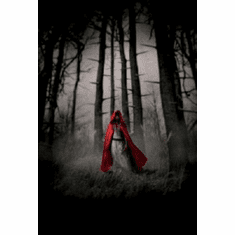 Red Riding Hood Poster #03 24inx36in