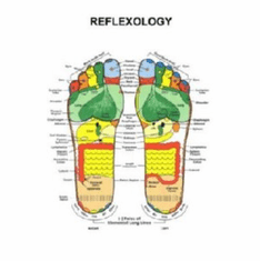 Reflexology Foot 8x10 photo Master Print #01