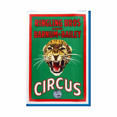 Ringling Bros. Circus Leopard Poster 24inx36in