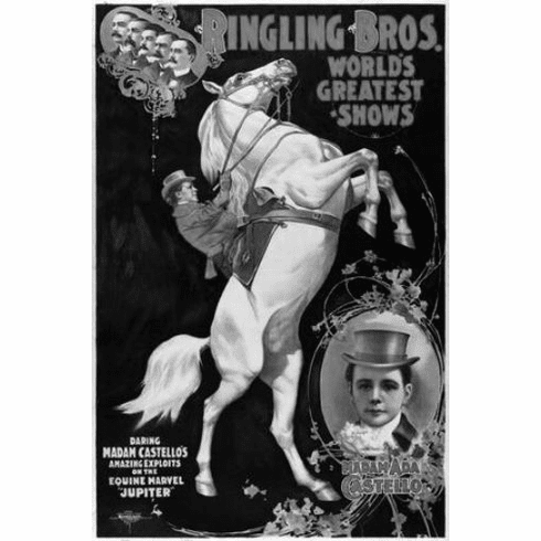 "Ringling Circus Black and White Poster 24""x36"""