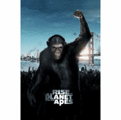 Rise Of The Apes Mini Movie Poster 11x17