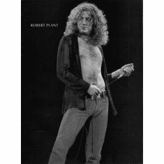 "Robert Plant Black and White Poster 24""x36"""