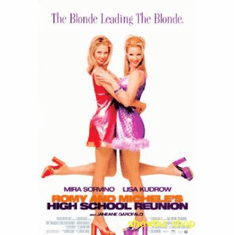Romy And Michele Movie Poster 24inx36in