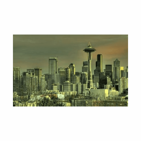 Seattle Skyline 8x10 photo Master Print