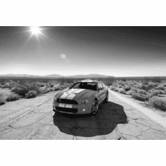 """Shelby GT-500 Black and White Poster 24""""x36"""""""