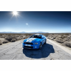 Shelby GT500 8x10 photo Master Print